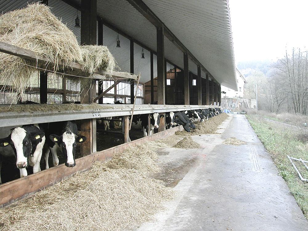 zukunft denkmalschutz landwirtschaft